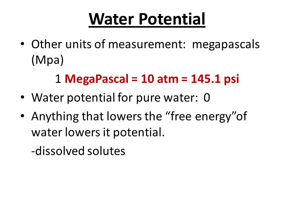 Water Potential Other units of measurement: megapascals (Mpa) 1 MegaPascal = 10 atm = 145.1 psi Water potential for pure water: 0 Anything that lowers