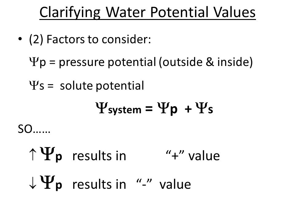 Clarifying Water Potential Values (2) Factors to consider:  p = pressure potential (outside & inside)  s = solute potential  system =  p +  s SO…