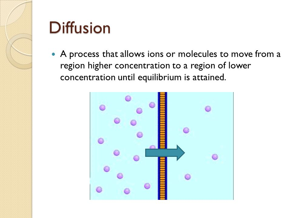 Vernier Experiment ◦ A conductivity probe will be used to monitor ions in solution and monitor its concentration over a period of time.