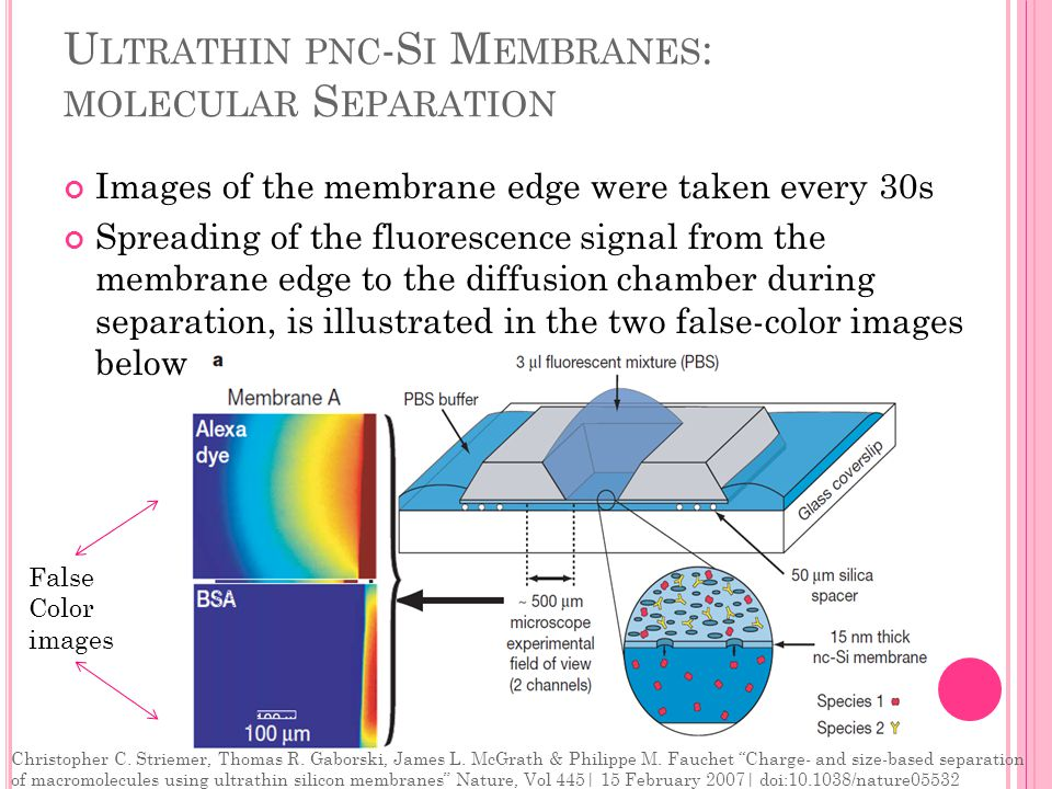U LTRATHIN PNC -S I M EMBRANES : MOLECULAR S EPARATION Images of the membrane edge were taken every 30s Spreading of the fluorescence signal from the membrane edge to the diffusion chamber during separation, is illustrated in the two false-color images below False Color images Christopher C.