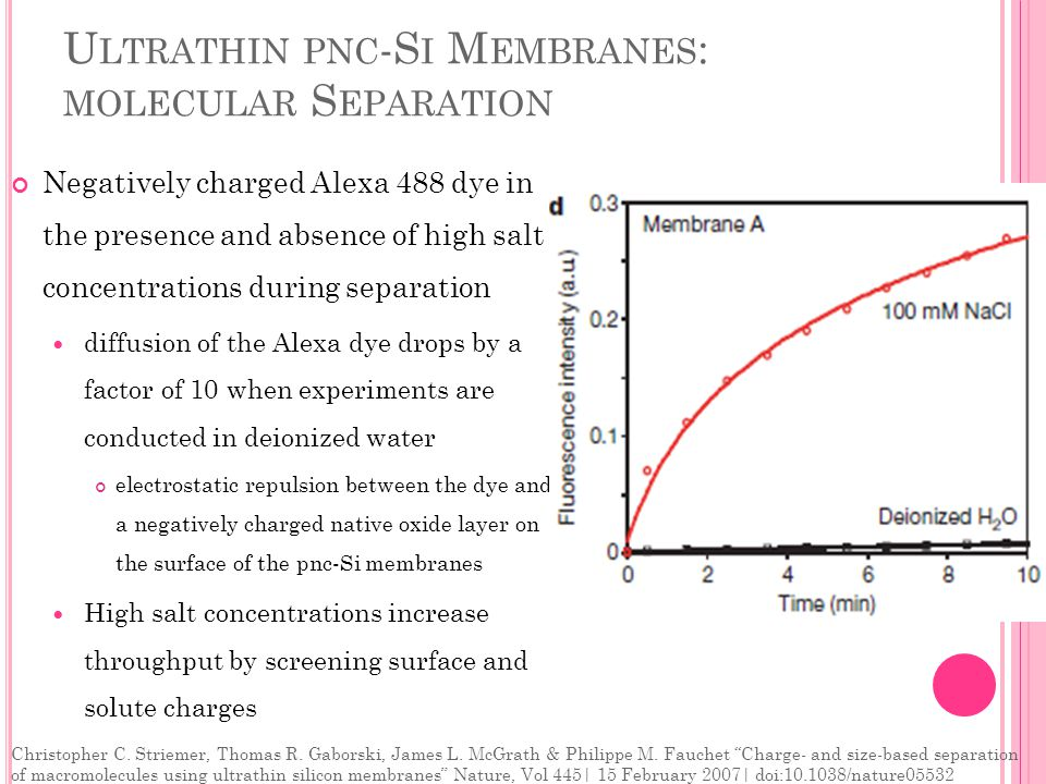 U LTRATHIN PNC -S I M EMBRANES : MOLECULAR S EPARATION Negatively charged Alexa 488 dye in the presence and absence of high salt concentrations during separation diffusion of the Alexa dye drops by a factor of 10 when experiments are conducted in deionized water electrostatic repulsion between the dye and a negatively charged native oxide layer on the surface of the pnc-Si membranes High salt concentrations increase throughput by screening surface and solute charges Christopher C.