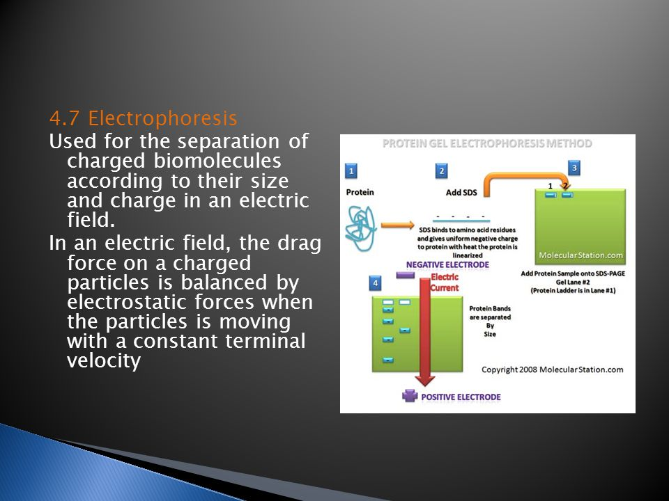 4.7 Electrophoresis Used for the separation of charged biomolecules according to their size and charge in an electric field.