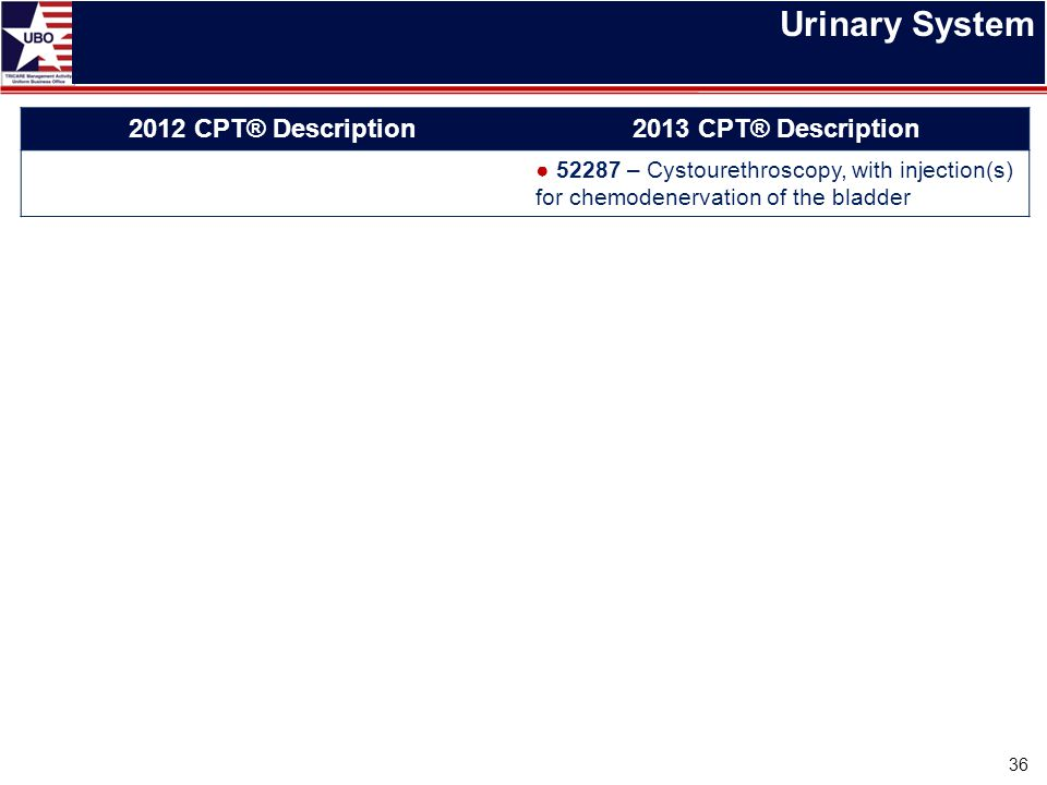 Urinary System 36 2012 CPT® Description2013 CPT® Description ● 52287 – Cystourethroscopy, with injection(s) for chemodenervation of the bladder