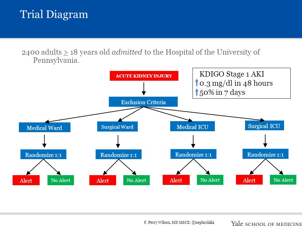 F. Perry Wilson, MD MSCE: @nephrolalia Trial Diagram 2400 adults > 18 years old admitted to the Hospital of the University of Pennsylvania. ACUTE KIDN