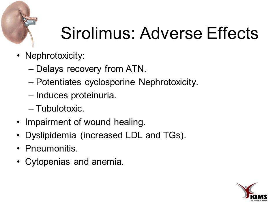 Sirolimus: Adverse Effects Nephrotoxicity: –Delays recovery from ATN.