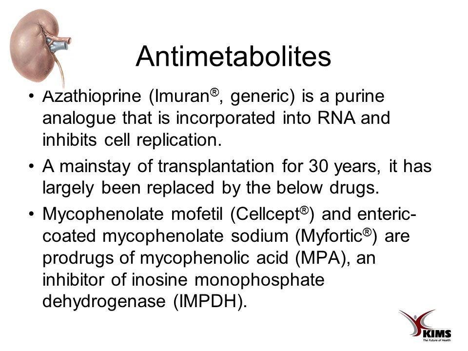 Antimetabolites Azathioprine (Imuran ®, generic) is a purine analogue that is incorporated into RNA and inhibits cell replication.
