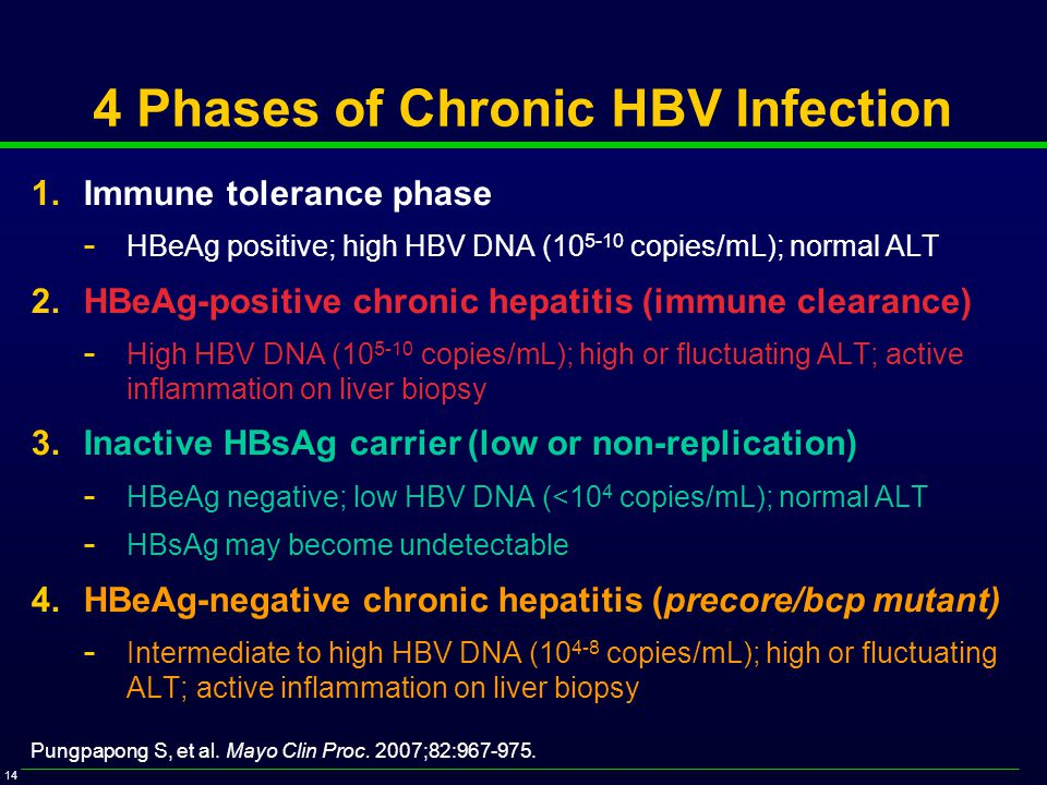 14 4 Phases of Chronic HBV Infection 1.Immune tolerance phase - HBeAg positive; high HBV DNA (10 5-10 copies/mL); normal ALT 2.HBeAg-positive chronic hepatitis (immune clearance) - High HBV DNA (10 5-10 copies/mL); high or fluctuating ALT; active inflammation on liver biopsy 3.Inactive HBsAg carrier (low or non-replication) - HBeAg negative; low HBV DNA (<10 4 copies/mL); normal ALT - HBsAg may become undetectable 4.HBeAg-negative chronic hepatitis (precore/bcp mutant) - Intermediate to high HBV DNA (10 4-8 copies/mL); high or fluctuating ALT; active inflammation on liver biopsy Pungpapong S, et al.