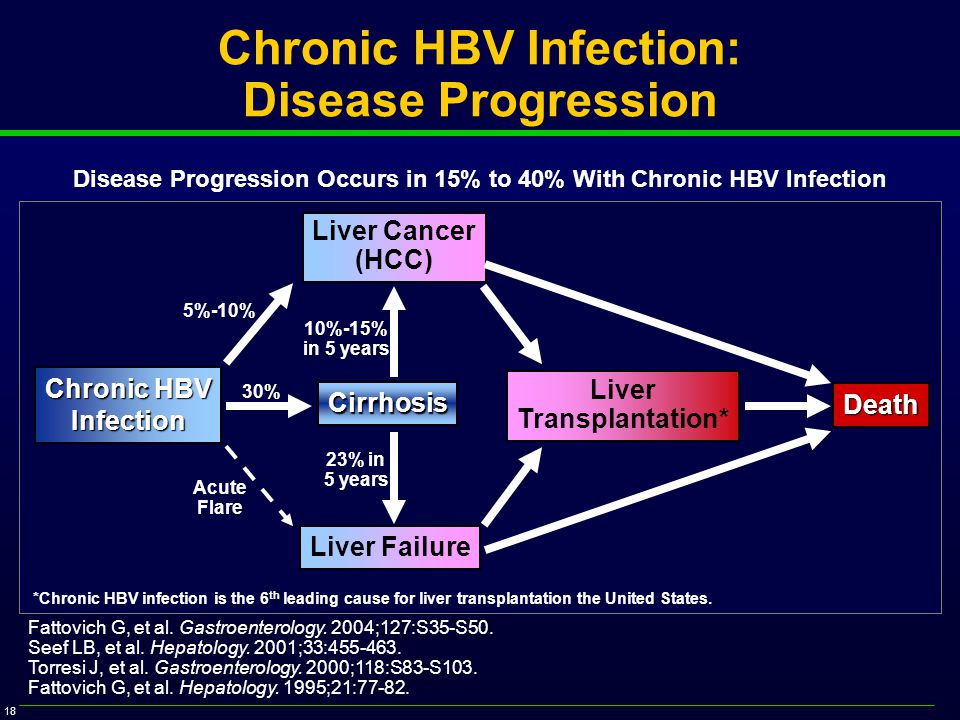 18 Chronic HBV Infection: Disease Progression Fattovich G, et al.