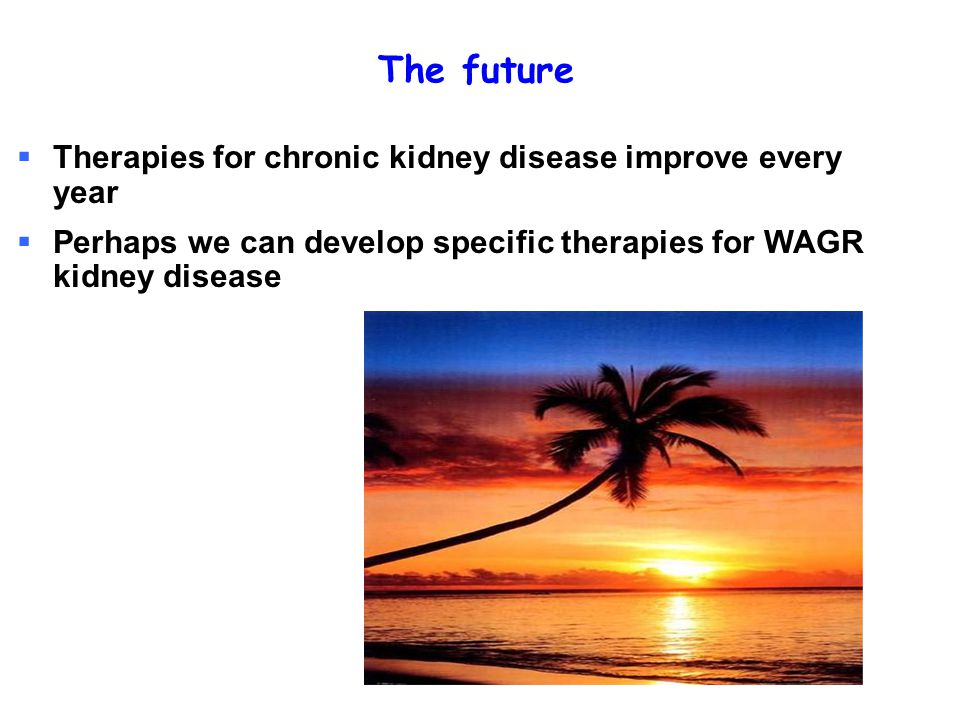 The future  Therapies for chronic kidney disease improve every year  Perhaps we can develop specific therapies for WAGR kidney disease
