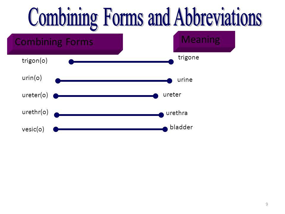 9 Combining Forms [trigon(o)] Combining Forms Meaning trigon(o) urin(o) ureter(o) urethr(o) vesic(o) trigone urine ureter urethra bladder