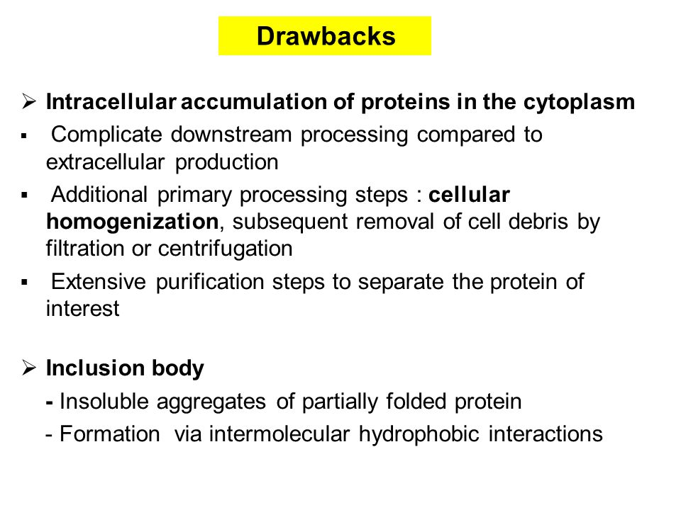  Intracellular accumulation of proteins in the cytoplasm  Complicate downstream processing compared to extracellular production  Additional primary processing steps : cellular homogenization, subsequent removal of cell debris by filtration or centrifugation  Extensive purification steps to separate the protein of interest  Inclusion body - Insoluble aggregates of partially folded protein - Formation via intermolecular hydrophobic interactions Drawbacks