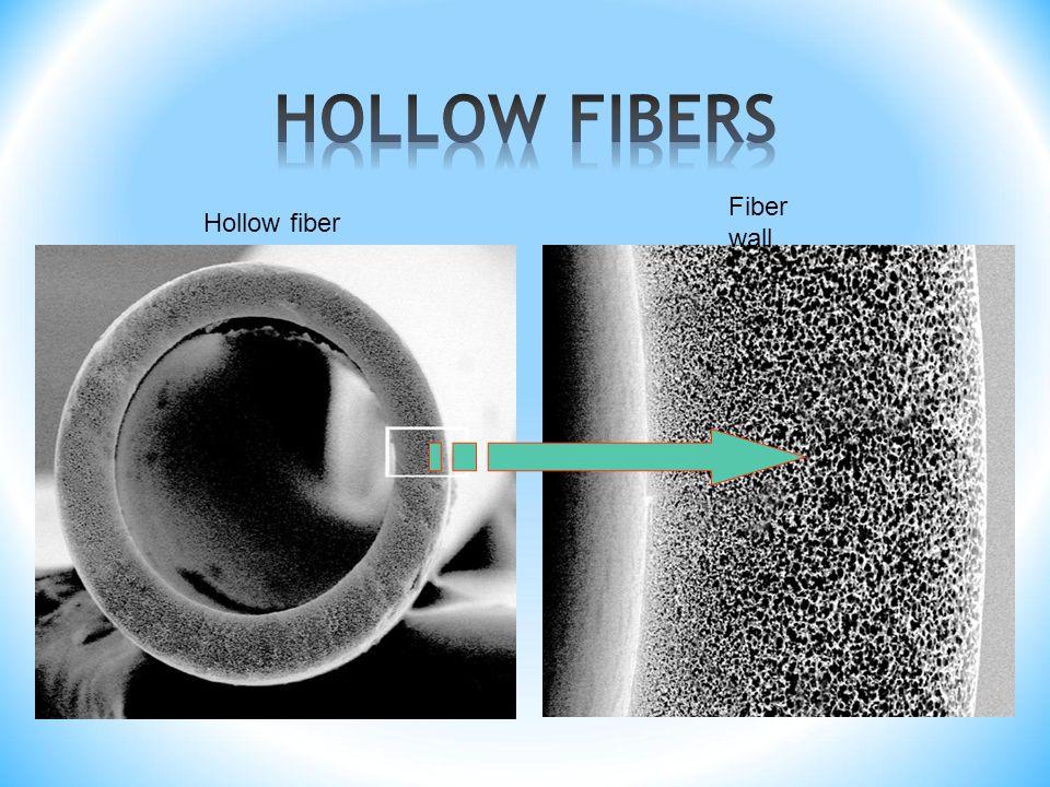 Hollow fiber Fiber wall