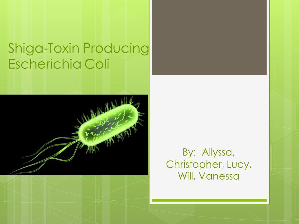 E. coli Video