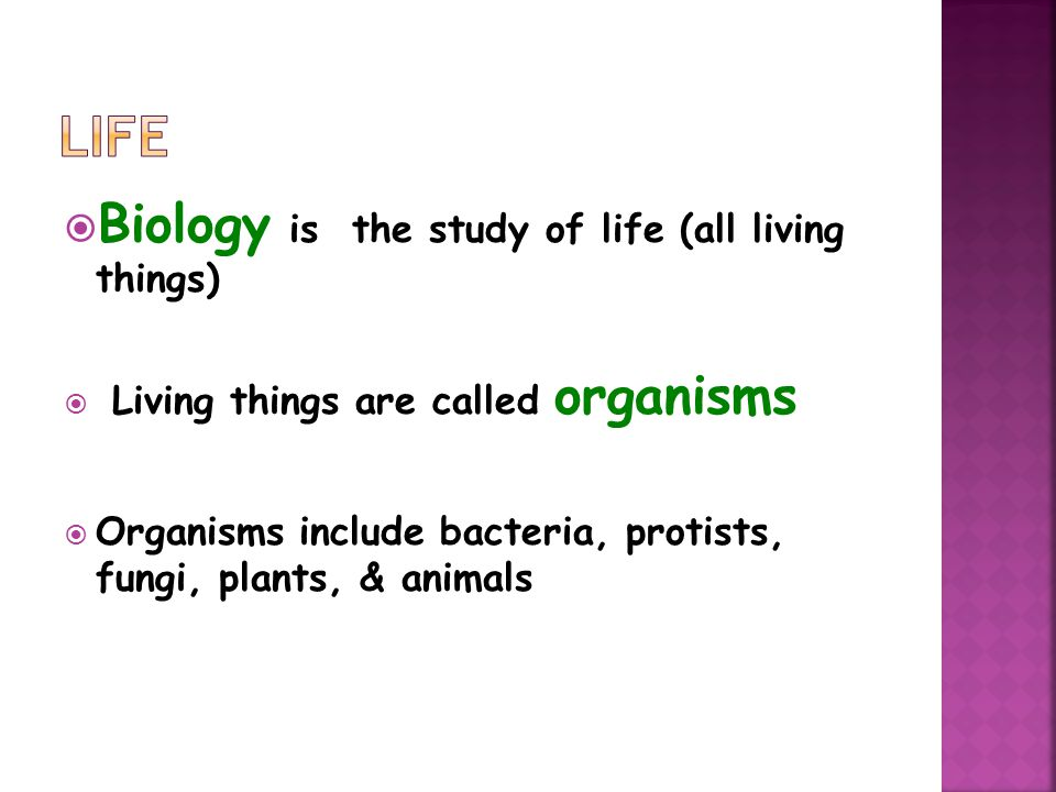  Biology is the study of life (all living things)  Living things are called organisms  Organisms include bacteria, protists, fungi, plants, & animals