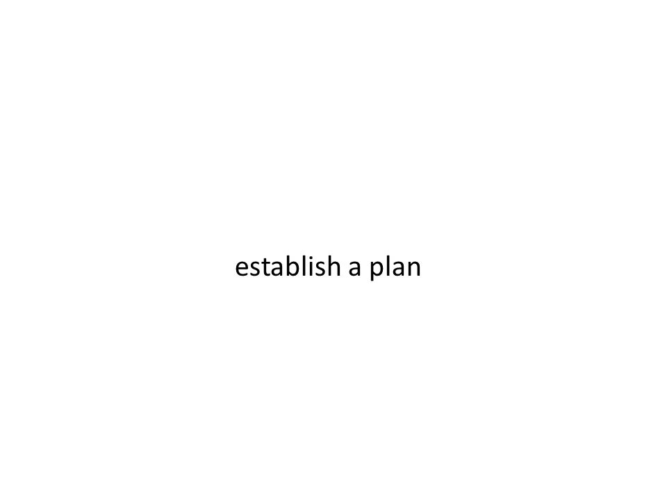 establish a plan