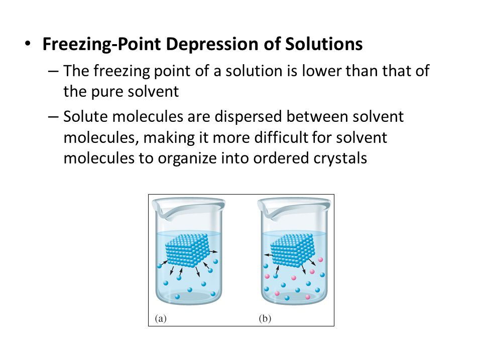 Freezing-Point Depression of Solutions – The freezing point of a solution is lower than that of the pure solvent – Solute molecules are dispersed between solvent molecules, making it more difficult for solvent molecules to organize into ordered crystals
