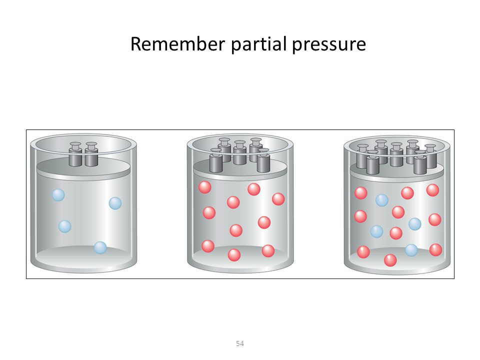 54 Remember partial pressure