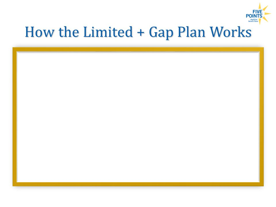 How the Limited + Gap Plan Works