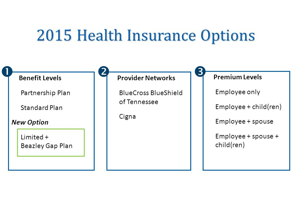 2015 Health Insurance Options Premium Levels Employee only Employee + child(ren) Employee + spouse Employee + spouse + child(ren) Benefit Levels Partnership Plan Standard Plan New Option Limited + Beazley Gap Plan Provider Networks BlueCross BlueShield of Tennessee Cigna 