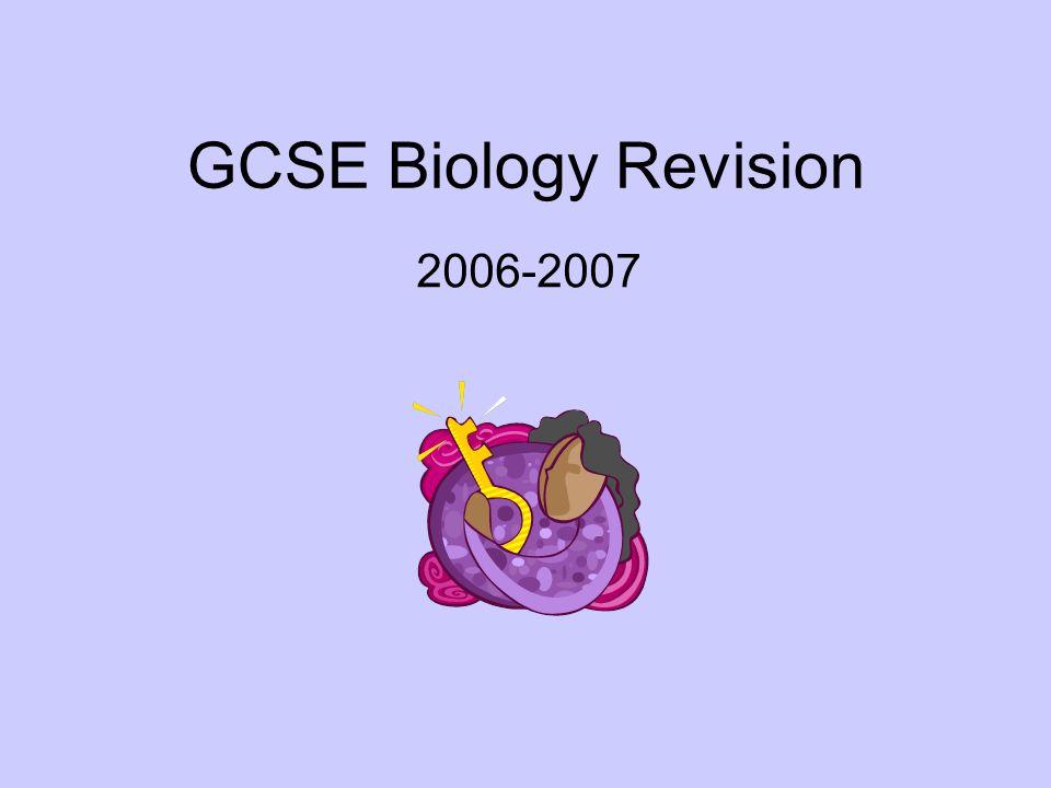 GCSE Biology Revision 2006-2007