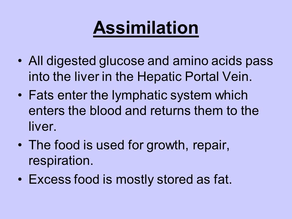 Assimilation All digested glucose and amino acids pass into the liver in the Hepatic Portal Vein. Fats enter the lymphatic system which enters the blo