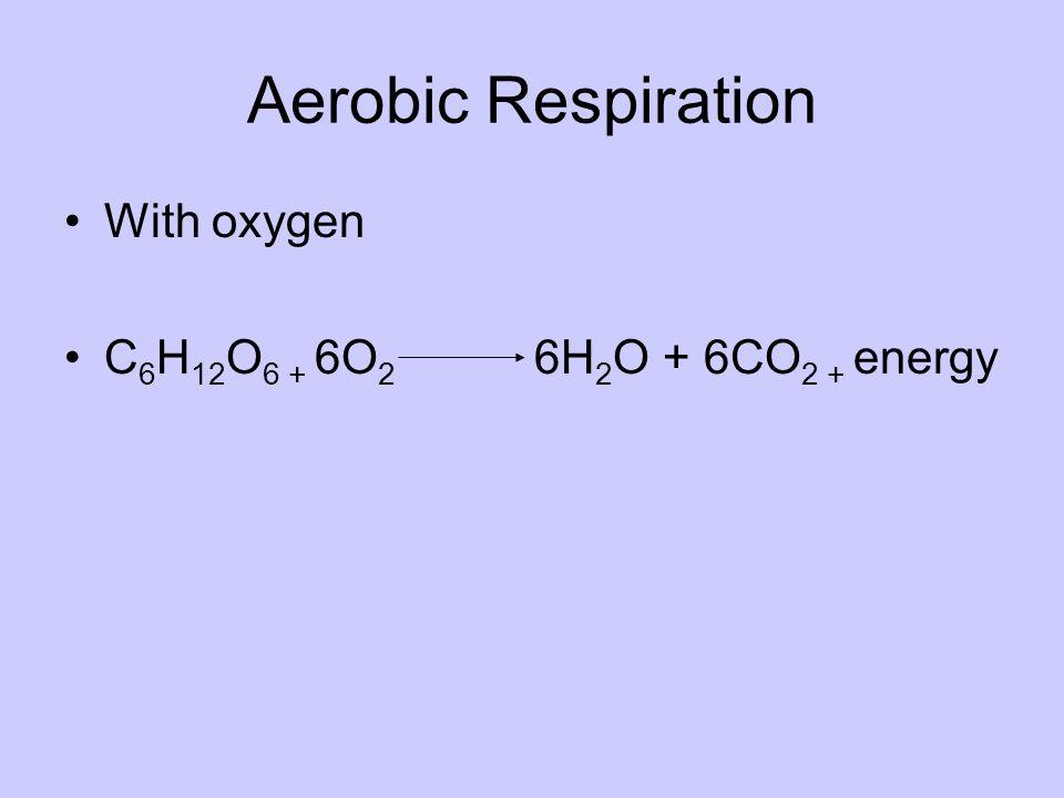 Aerobic Respiration With oxygen C 6 H 12 O 6 + 6O 2 6H 2 O + 6CO 2 + energy
