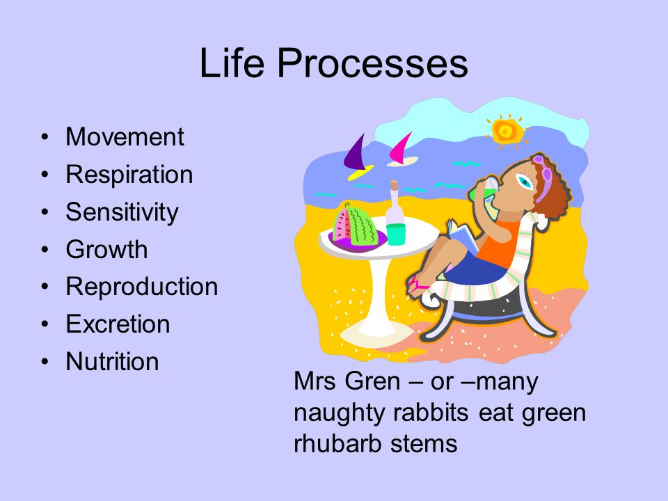 Life Processes Movement Respiration Sensitivity Growth Reproduction Excretion Nutrition Mrs Gren – or –many naughty rabbits eat green rhubarb stems
