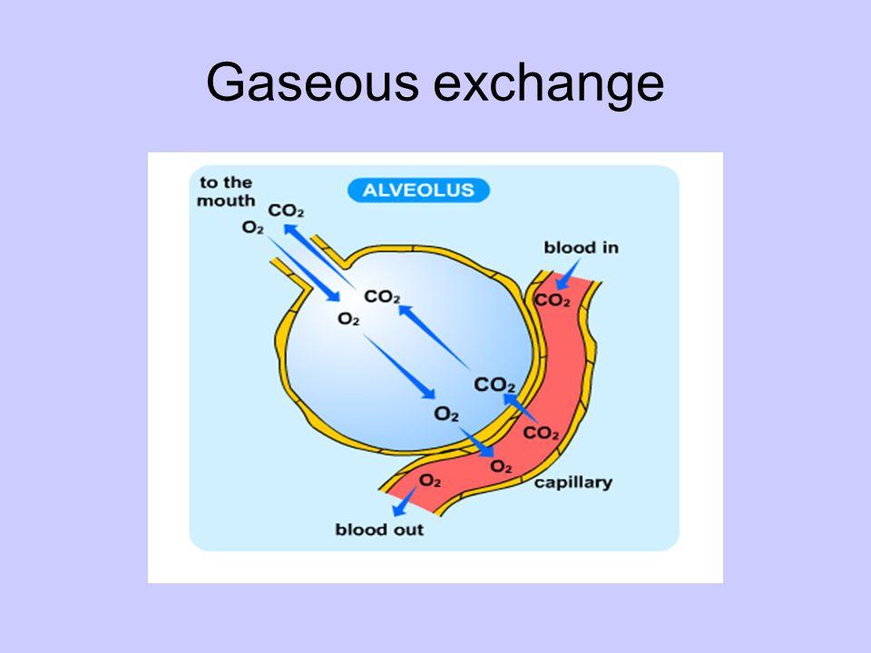 Gaseous exchange