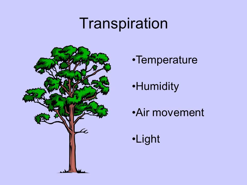 Transpiration Temperature Humidity Air movement Light