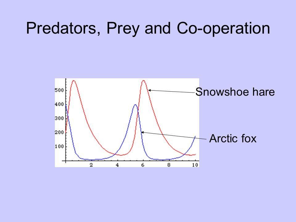 Predators, Prey and Co-operation Snowshoe hare Arctic fox