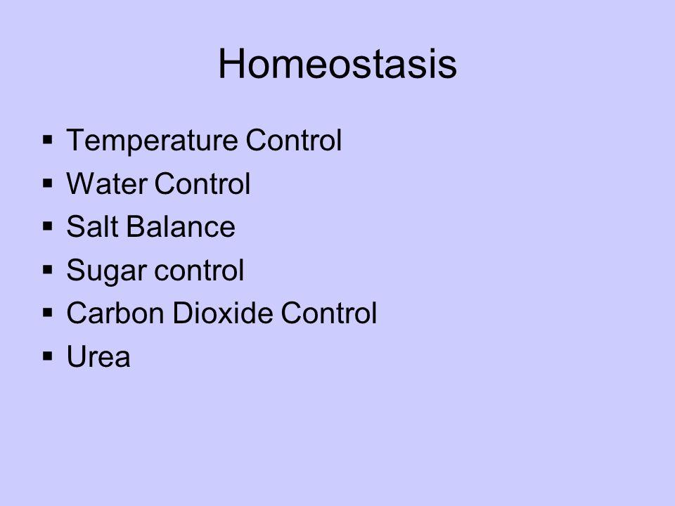 Homeostasis  Temperature Control  Water Control  Salt Balance  Sugar control  Carbon Dioxide Control  Urea