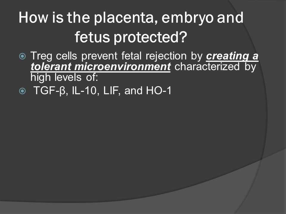 How is the placenta, embryo and fetus protected.