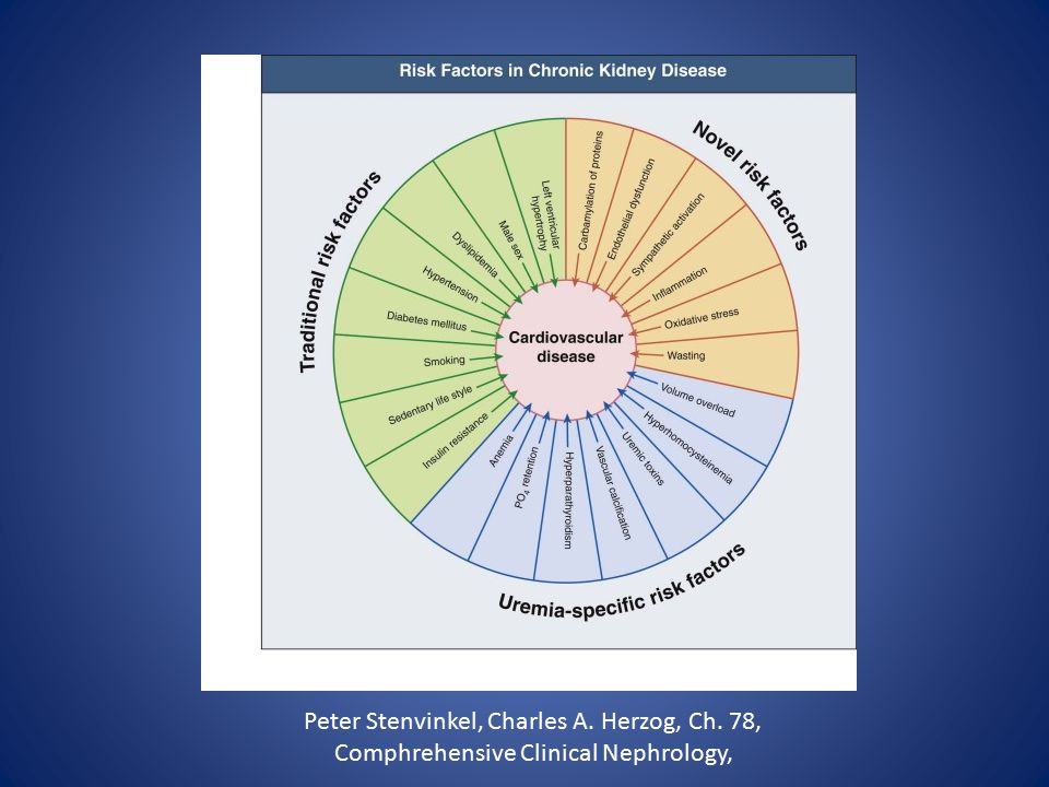 Peter Stenvinkel, Charles A. Herzog, Ch. 78, Comphrehensive Clinical Nephrology,