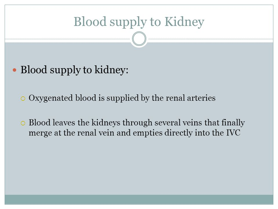 Blood supply to Kidney Blood supply to kidney:  Oxygenated blood is supplied by the renal arteries  Blood leaves the kidneys through several veins that finally merge at the renal vein and empties directly into the IVC