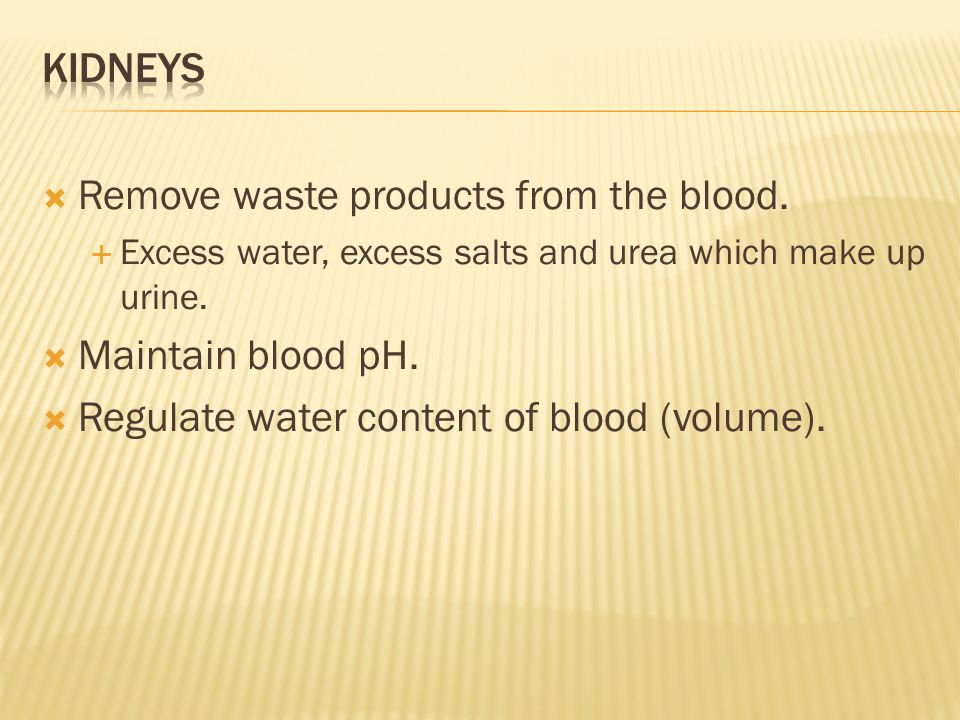 Remove waste products from the blood.  Excess water, excess salts and urea which make up urine.
