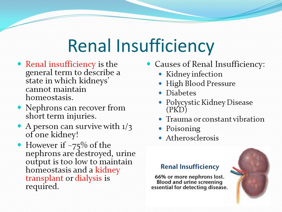 Renal Insufficiency Renal insufficiency is the general term to describe a state in which kidneys' cannot maintain homeostasis. Nephrons can recover fr