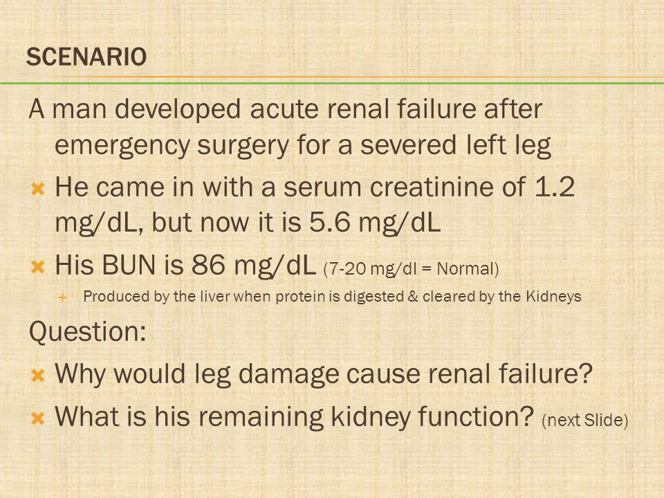 SCENARIO A man developed acute renal failure after emergency surgery for a severed left leg  He came in with a serum creatinine of 1.2 mg/dL, but now