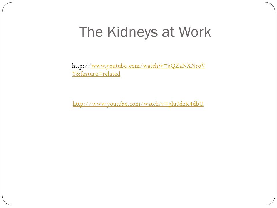 The Kidneys at Work http://www.youtube.com/watch v=glu0dzK4dbU http://www.youtube.com/watch v=aQZaNXNroV Y&feature=related