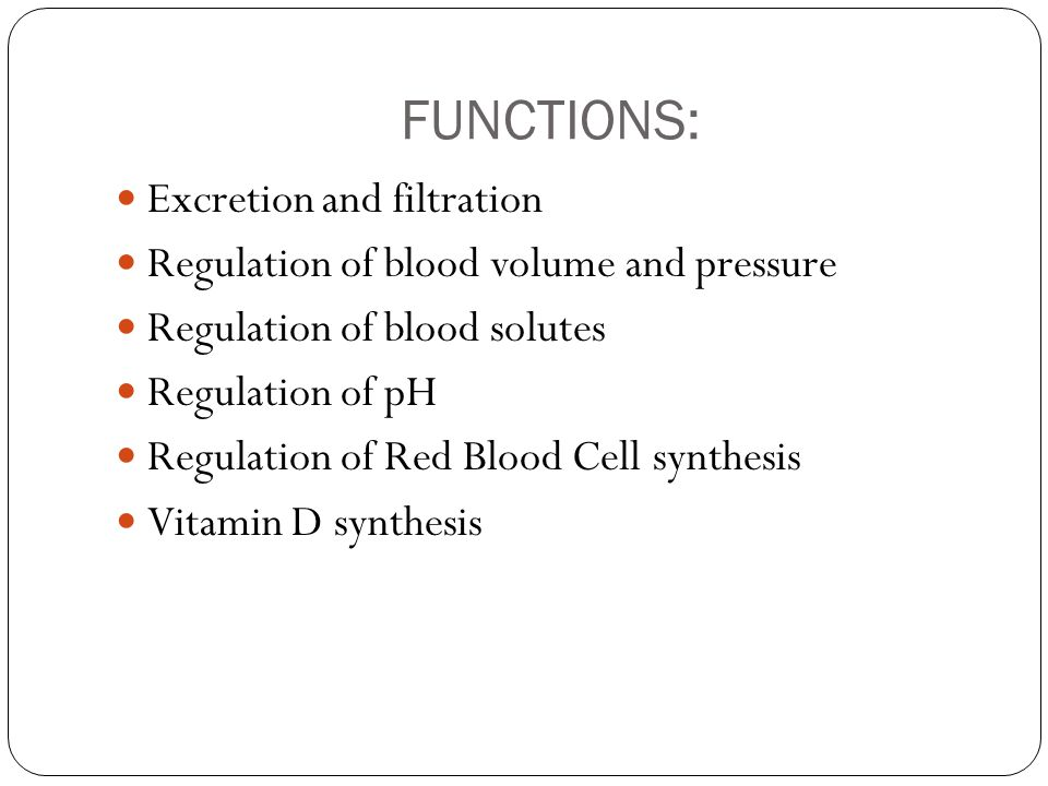 FUNCTIONS: Excretion and filtration Regulation of blood volume and pressure Regulation of blood solutes Regulation of pH Regulation of Red Blood Cell synthesis Vitamin D synthesis