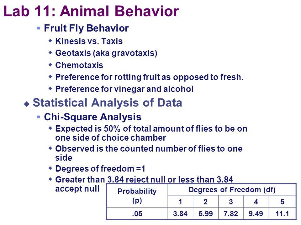 Lab 11: Animal Behavior  Description  set up an experiment to study behavior in an organism  Concepts  experimental design  control vs. experimen