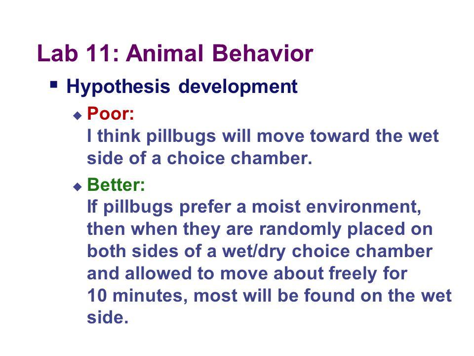Lab 11: Animal Behavior  Pill Bug Behavior (the old lab)  Same ideas with different organism