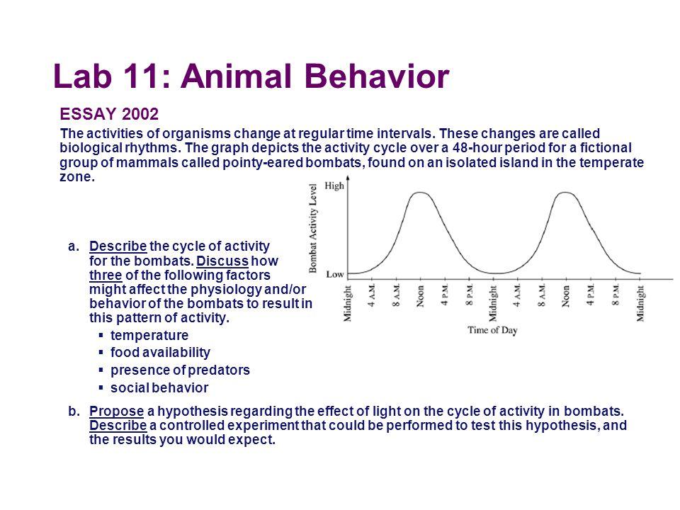 Lab 11: Animal Behavior ESSAY 1997 A scientist working with Bursatella leachii, a sea slug that lives in an intertidal habitat in the coastal waters o