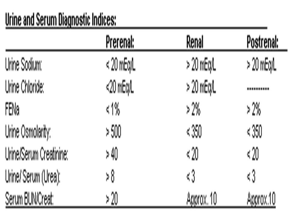 Diagnostic Evaluation: Urinalysis shows proteinuria, hematuria, casts. Serum creatinine and BUN levels are elevated; arterial blood gas levels, serum
