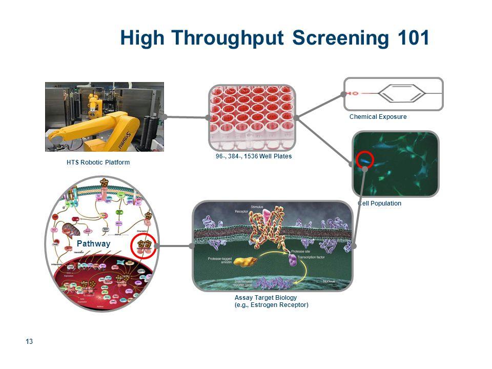 13 High Throughput Screening 101 96-, 384-, 1536 Well Plates Assay Target Biology (e.g., Estrogen Receptor) HTS Robotic Platform Pathway Chemical Exposure Cell Population HTS: High Throughput Screening