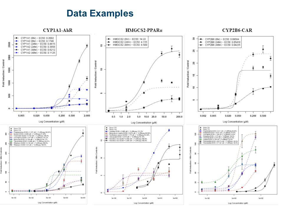 28 Data Examples CYP1A1-AhRCYP2B6-CARHMGCS2-PPARα