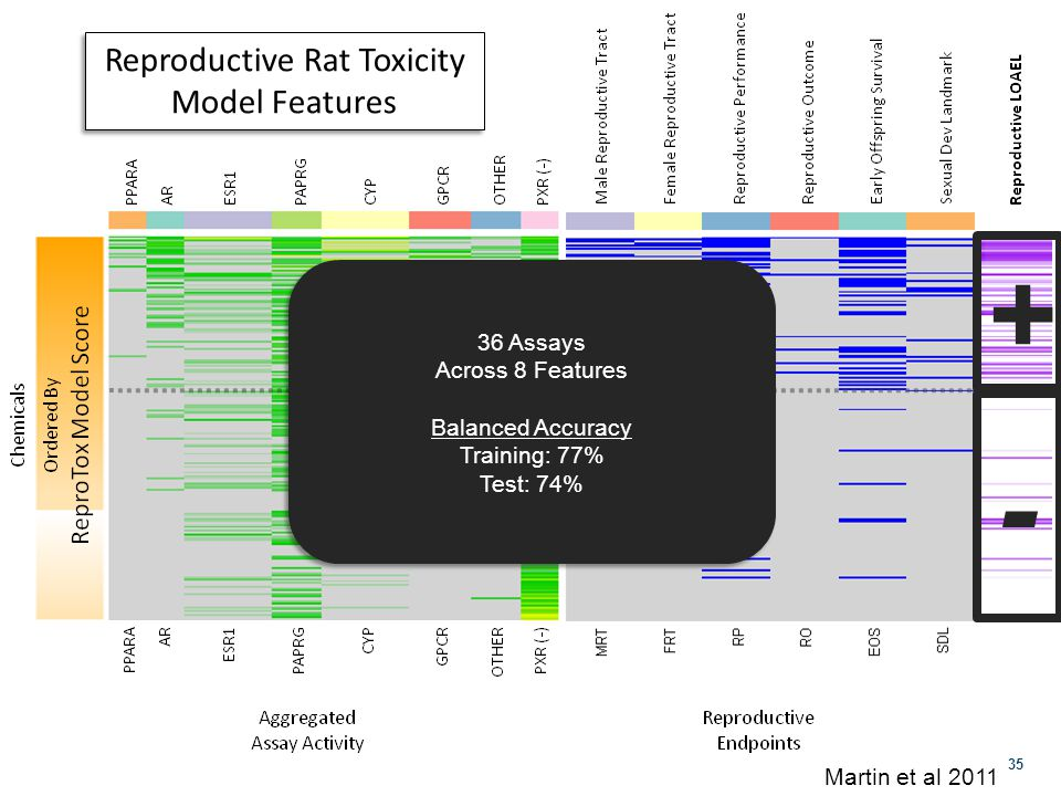 35 36 Assays Across 8 Features Balanced Accuracy Training: 77% Test: 74% 36 Assays Across 8 Features Balanced Accuracy Training: 77% Test: 74% + - Martin et al 2011 Reproductive Rat Toxicity Model Features