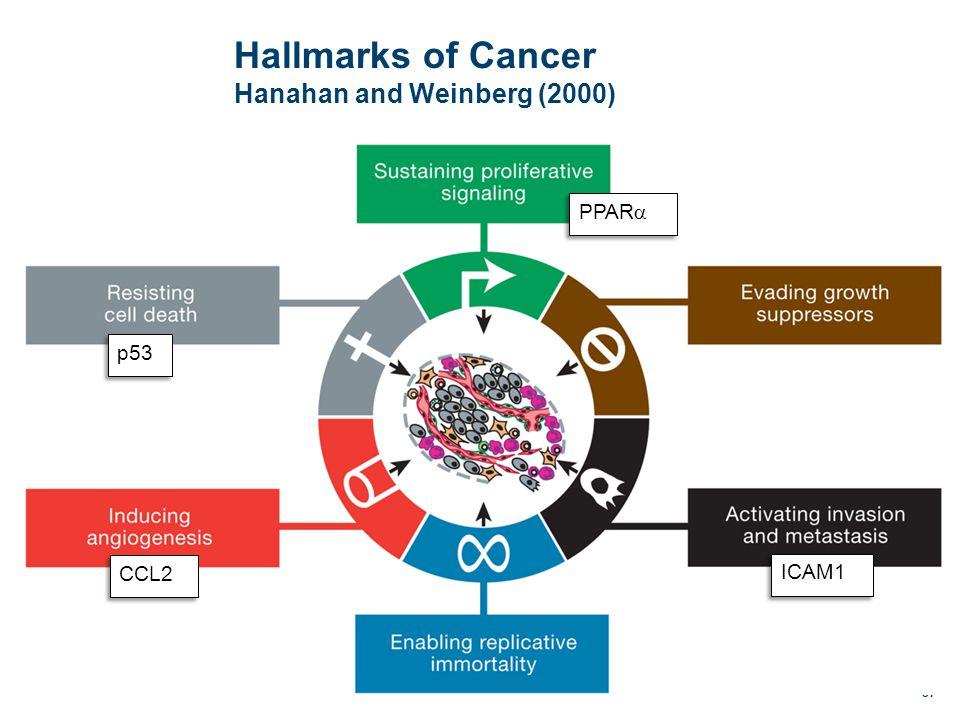 Hallmarks of Cancer Hanahan and Weinberg (2000) 37 PPAR  p53 CCL2 ICAM1