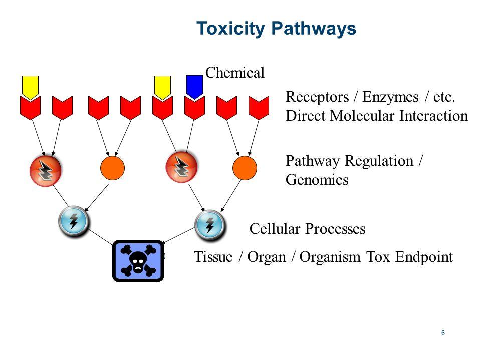 6 Toxicity Pathways Receptors / Enzymes / etc.