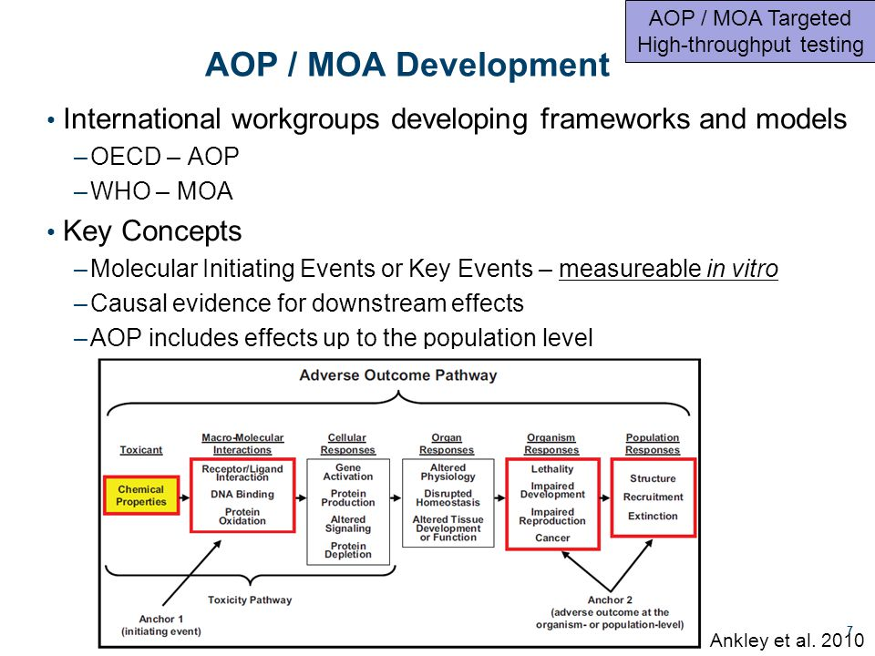 AOP / MOA Development International workgroups developing frameworks and models –OECD – AOP –WHO – MOA Key Concepts –Molecular Initiating Events or Key Events – measureable in vitro –Causal evidence for downstream effects –AOP includes effects up to the population level 7 Ankley et al.
