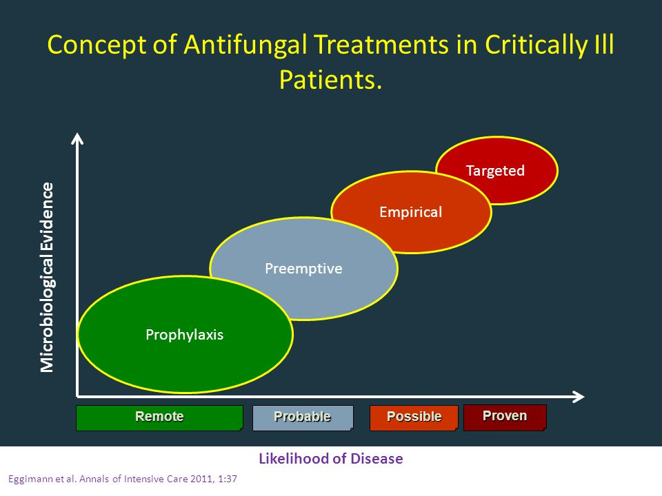 Concept of Antifungal Treatments in Critically Ill Patients.